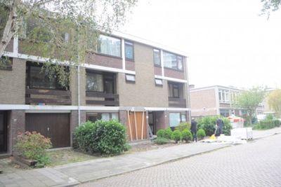 Elviraland, Den Haag