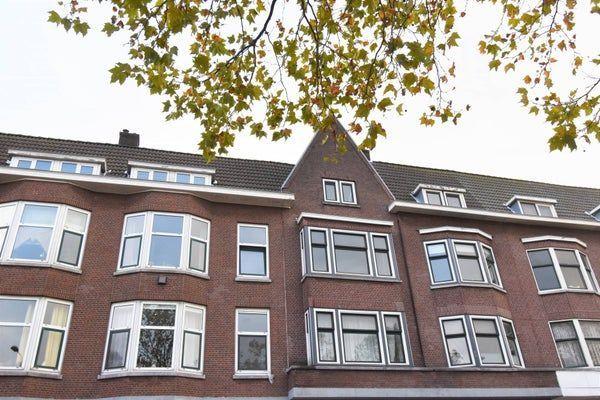Aelbrechtskade, Rotterdam