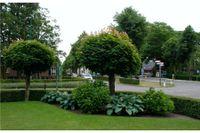 Kerkstraat 3, Heeswijk-Dinther