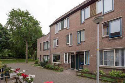 Steenuilstraat 14, Alkmaar