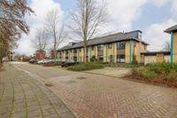 Schelde 11, Hoogeveen
