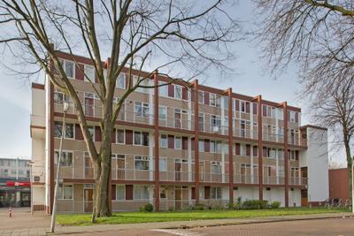 Zilverschoonplein, Zaandam