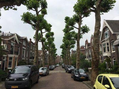 Botenmakersstraat, Zaandam