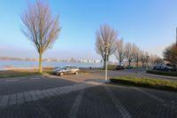 Paviljoentjalk 29, Bergen Op Zoom