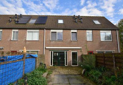 Schoener 34 30, Lelystad