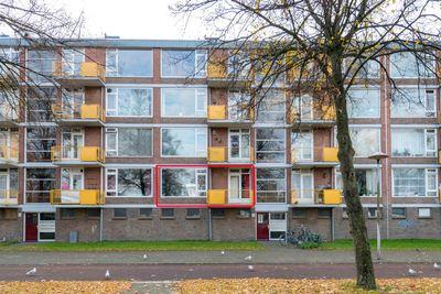 Moezeldreef, Utrecht