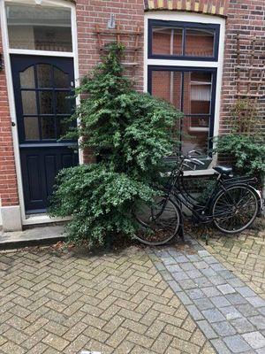 Vorsselmanstraat, Weesp