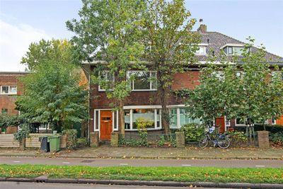 Hoge Rijndijk 223, Leiden