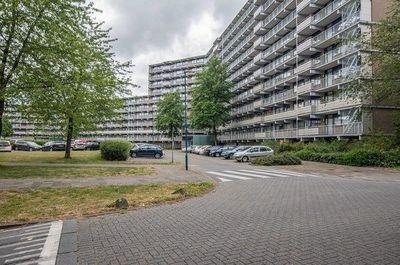 Kadoelerbos, Zoetermeer