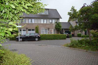 Cor Hilbrinkstraat, Borne
