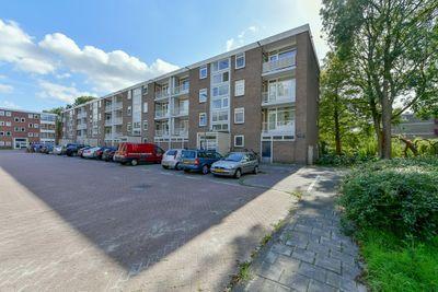 Asingaborg 151, Amsterdam