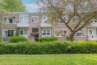 Helperzoom 153, Groningen