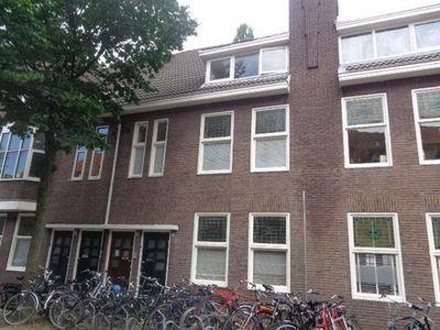 Hoefkestraat, Eindhoven