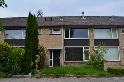 Pippelingstraat 45, Eindhoven