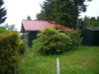 Groene Papegaai 19-X21, Hoogerheide