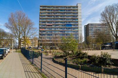 Gradaland 135, Den Haag