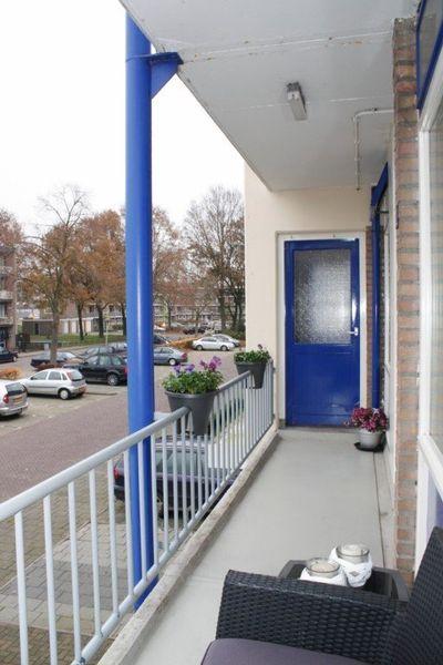 De Reiger, Hoogeveen