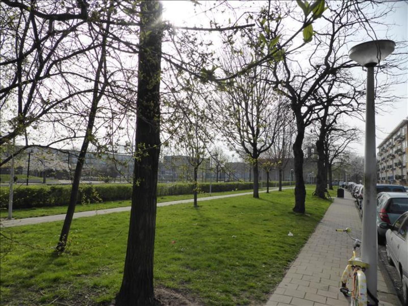 Egidiusstraat 85H, Amsterdam