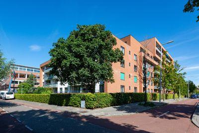 Zanglijsterstraat 45, Rotterdam