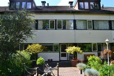 Lyra 5, Dordrecht