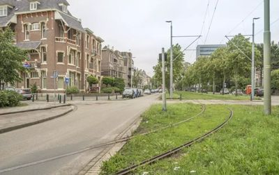 Eisenhowerlaan, Den Haag