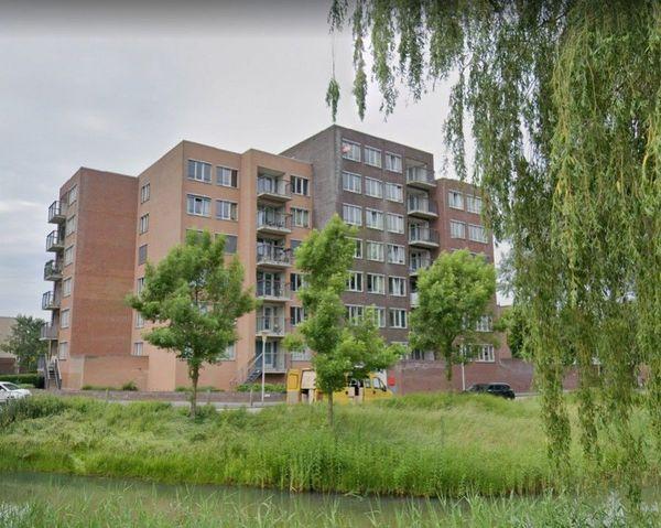 Fonteinkruid, Zwolle