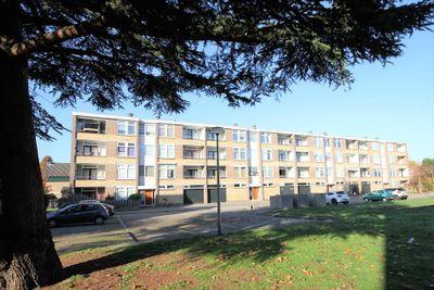 Cortenaerstraat 56, Papendrecht