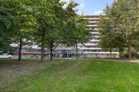 Kikkenstein 3635, Amsterdam