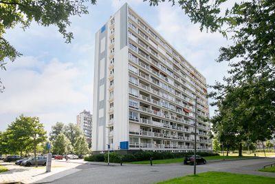 Louis Raemaekersstraat 197, Schiedam