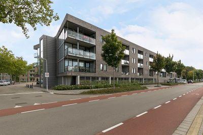 Alberdingk Thijmstraat, Terneuzen