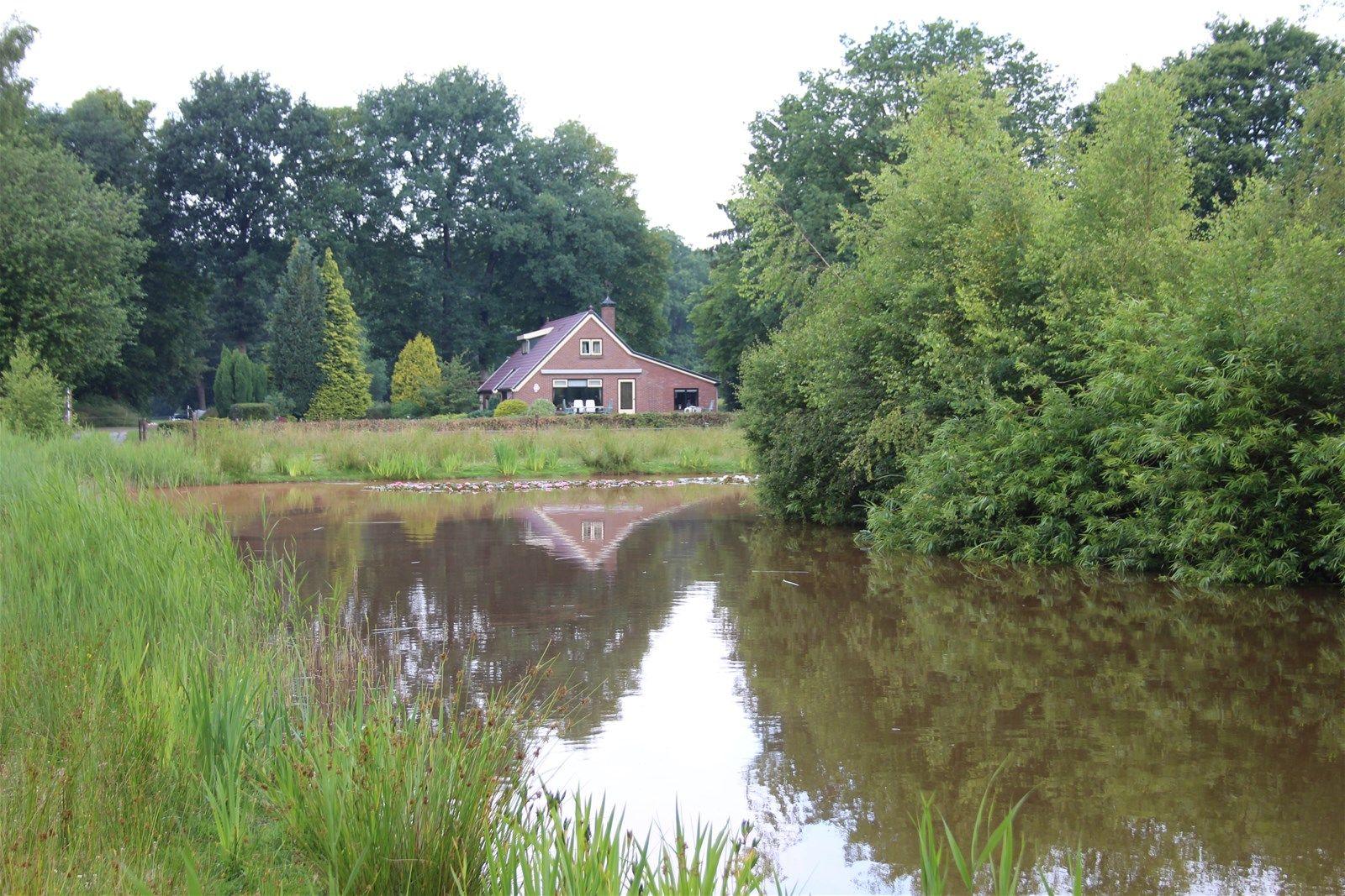 Boergrup 4, Vledderveen