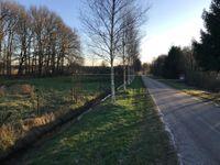 Carstenswijk 7, Elim