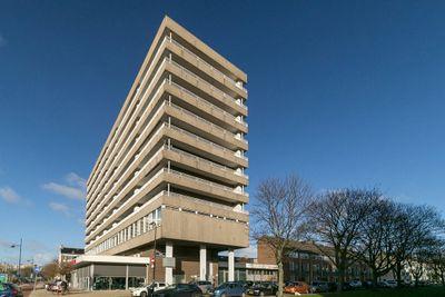 Henri ter Hallsingel 142, Rijswijk
