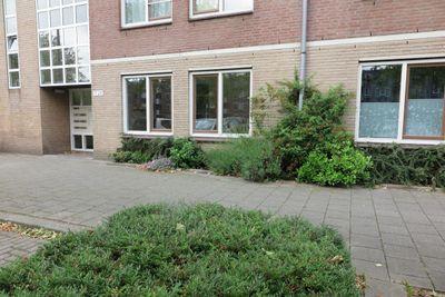 Schollevaartse Dreef 17, Rotterdam