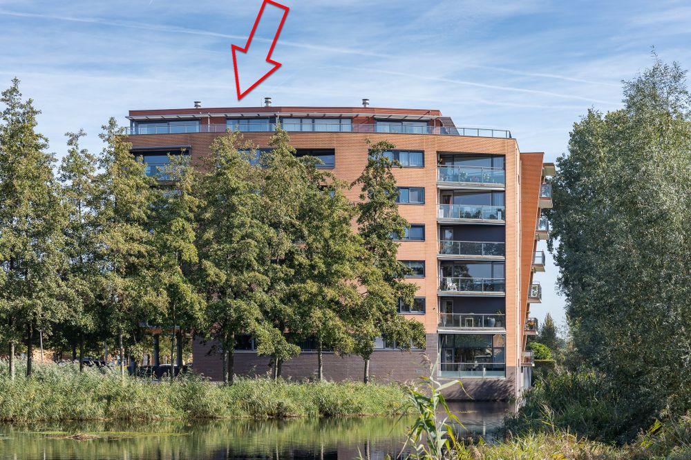 Akkerviool koopwoning in hendrik ido ambacht zuid holland