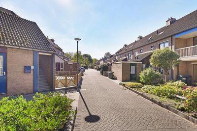 Grutto, Hoogvliet Rotterdam