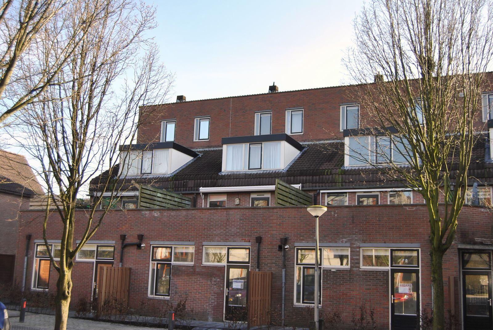 Slotplaats 20, Huizen