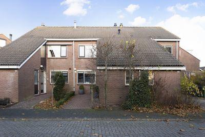 Sterrekroos 63, Kampen