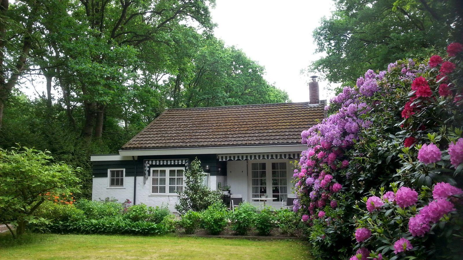 Langeloerweg 32, Norg