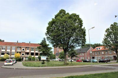 Groene Weide, Arnhem