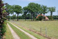 Carstenswijk 4, Elim