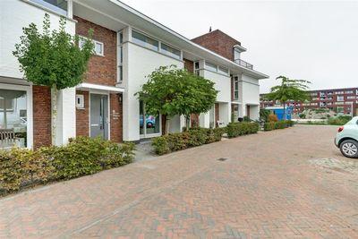 Zwemkrab 3, Bergen Op Zoom