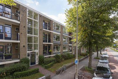 Burggravenlaan, Leiden