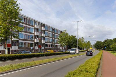 Gordelweg 31C, Rotterdam