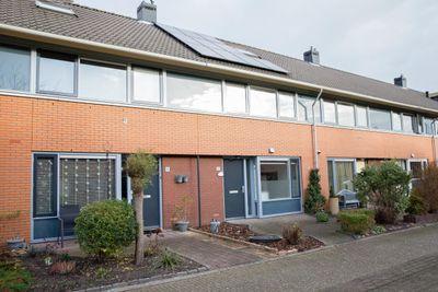 Patriottenland 40, Houten
