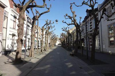 Lindenlaan, Valkenburg