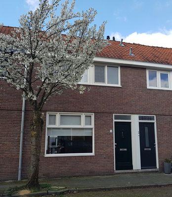 Ruysdaelstraat, Zwolle