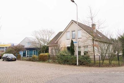 Drukkerij 11, Steenbergen