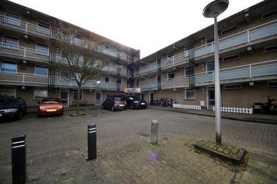 Springtij, Noordwijk
