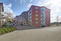 Meestoof 106, Middelburg